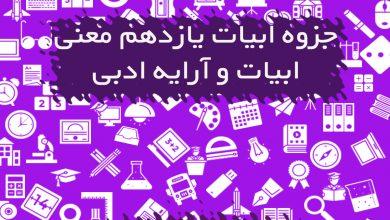 تصویر از جزوه معانی ابیات و آرایه ادبی فارسی یازدهم
